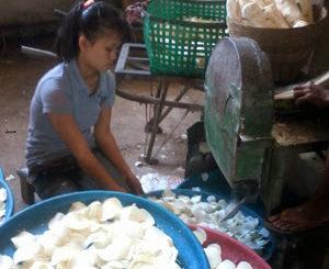 pabrik keripik singkong, produsen keripik singkong, grosir keripik singkong, pusat Keripik singkong di magelang, distributor Keripik singkong magelang, Keripik singkong magelang, HUB 08564 323 8011