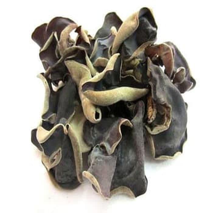jual jamur kuping kering jual jamur kuping hitam jual jamur kuping surabaya jual jamur kuping di solo jual jamur kuping basah jual jamur kuping di jogja jual jamur kuping solo harga jamur kuping harga jamur kuping basah 2018 jual jamur tiram banjarmasin harga jamur kuping basah per kg jual jamur tiram balikpapan jual jamur tiram blimbing kota malang jawa timur jual jamur tiram & bibit magelang jawa tengah harga jamur kuping basah dan kering harga jamur tiram coklat harga jamur tiram coklat per kilo harga jamur tiram crispy per kg harga jamur tiram crispy jual bibit jamur tiram cikarang jual bibit jamur tiram coklat jual bibit jamur tiram cirebon jual bibit jamur tiram cianjur jual baglog jamur tiram cirebon jual bibit jamur tiram ciamis harga jamur kuping di superindo harga jamur kuping di pasaran jual jamur tiram di padang jual jamur tiram di makassar jual jamur tiram di pekanbaru jual jamur tiram di palembang jual jamur tiram fresh jual bibit jamur tiram f0 jual bibit jamur tiram f1 jual bibit jamur tiram f3 jual jamur tiram gresik jual baglog jamur tiram gresik jual bibit jamur tiram garut jual baglog jamur tiram garut jual bibit jamur tiram gresik